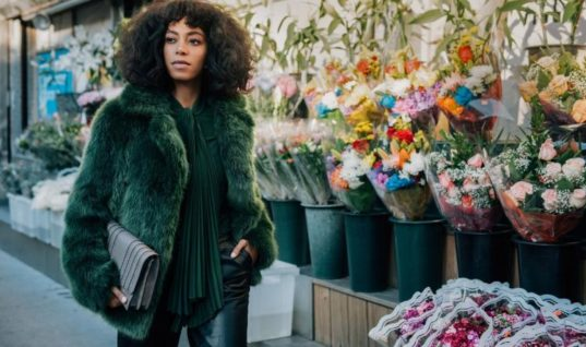 Taking Her Seat At The Table: Solange's Mark on 2016