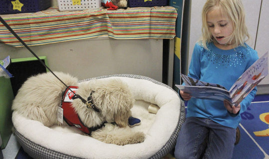 Iowa School Gets a Therapy Dog to Help Students with Anxiety
