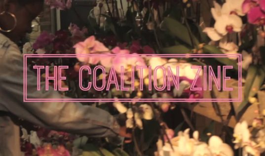 Interview With Fabiola Ching and Tam-anh Nguyen of Coalition Zine