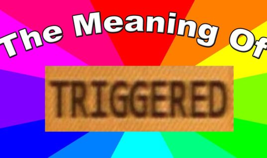 "Why Being ""Triggered"" Isn't Funny"