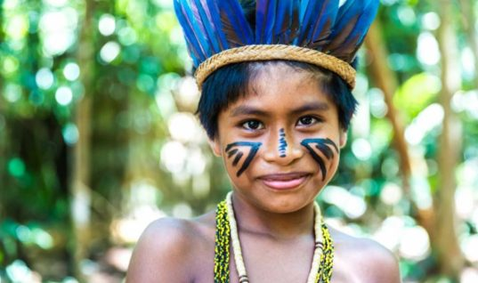 Indigenous People of the Amazon Are Under Attack