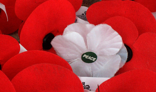 The Argument for the White Poppy